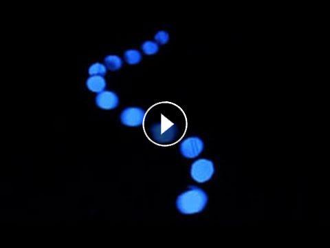 Gezichtsbedrog Pendulum